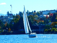 Fall Series 2015: Fall Series Race Day 1